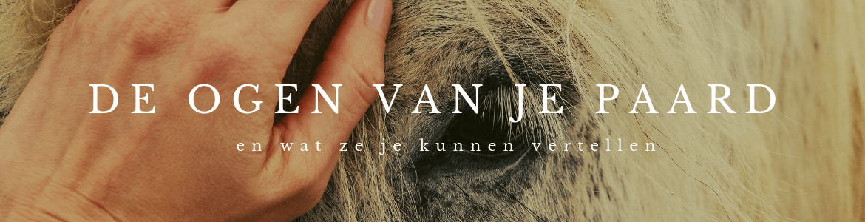 ogen van paard