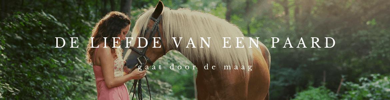 De Liefde van een paard gaat door de maag
