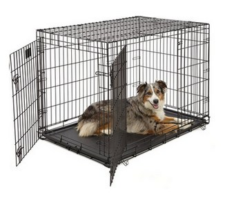Petstore hondenbench